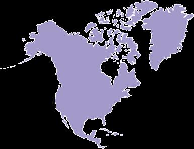 IDIS GLOBAL